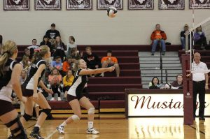 Wynne Vandersall bumps the ball at the first round of regionals Wednesday. The Mustangs beat Solon in three sets. Photo by Emma Klinkhammer.