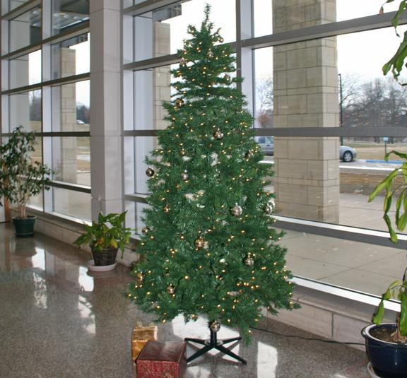 Student Council Puts up Mustang Tree