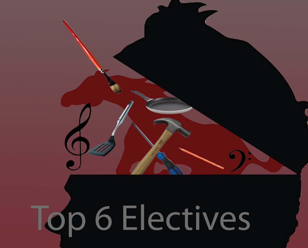 Top 6 Electives at MVHS