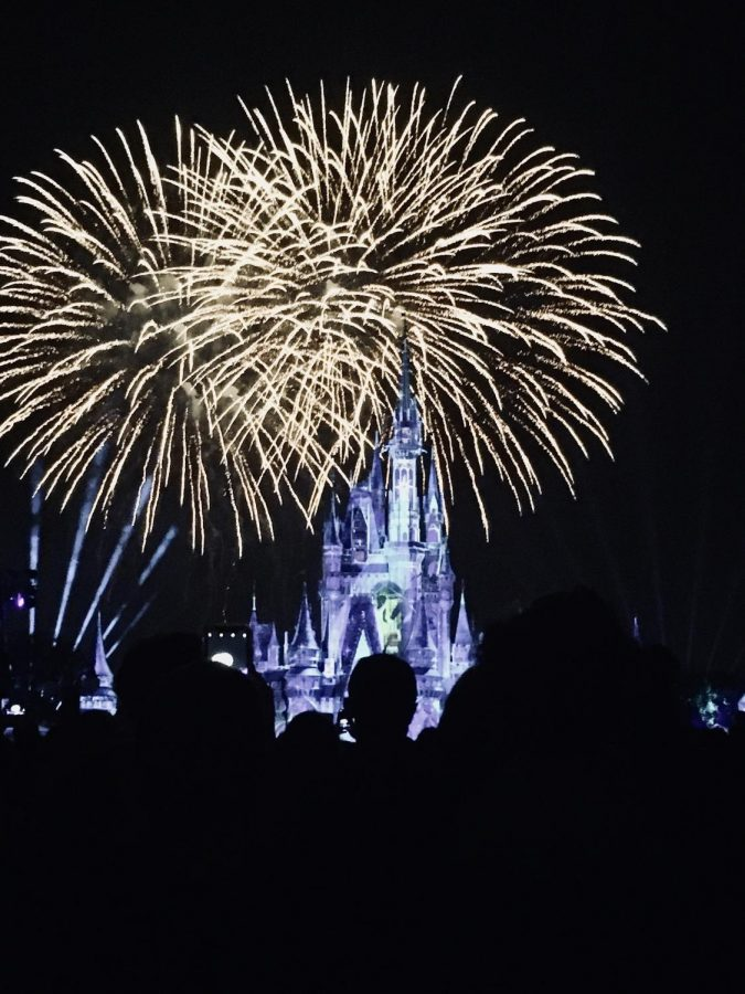 Students+gather+to+watch+the+firework+show+in+Magic+Kingdom.
