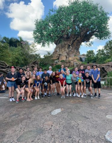 Students pose in front of the Tree of Life in Animal Kingdom.