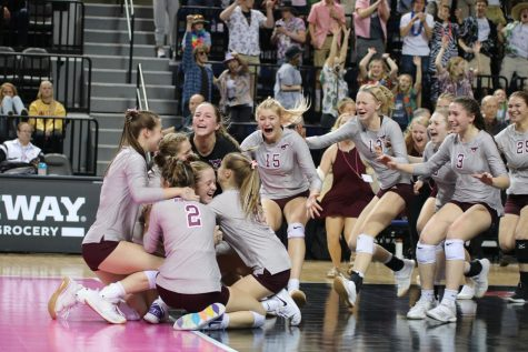 The Mustangs celebrate as they win the state final match Nov. 15.